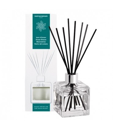 Sticks Diffuser Vent d'Océan 125 ml Lampe Berger