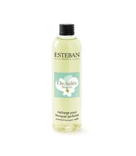 Orchidée Blanche recarga 250 ml Esteban