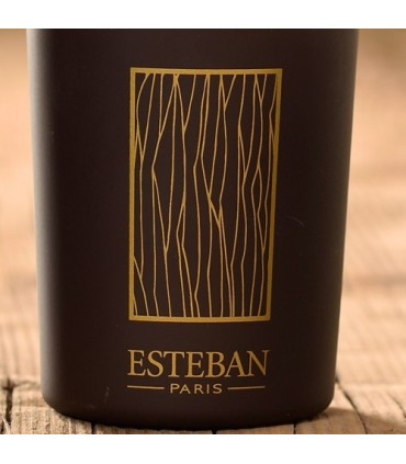Cedre 100 ml sticks diffuser Esteban