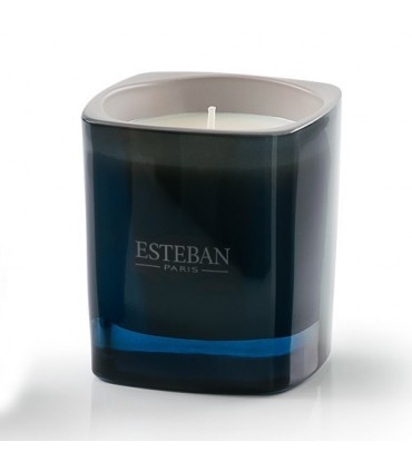 Cashmere Wood & Ambergris Scented Candle Esteban