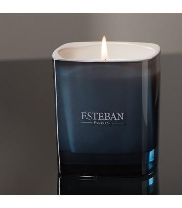 Bois de Cashmere & Ambre Gris Vela Perfumada Esteban