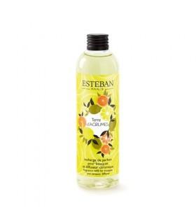 Terre d´Agrumes Recarga 250 ml Esteban