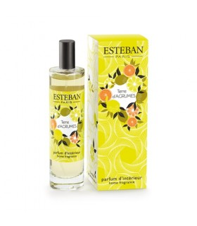 Terre d' Agrumes 100 ml Spray Room Esteban