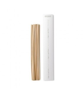 Spare air freshener Sticks Mikado Esteban 22 cm